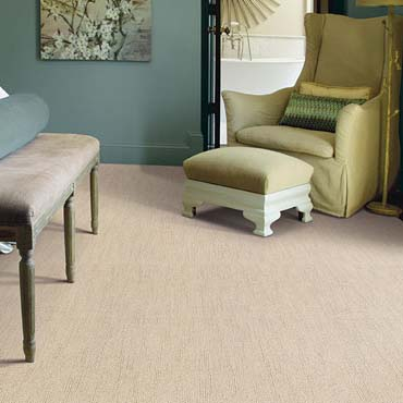Caress Carpet by Shaw | Mt Lebanon, PA